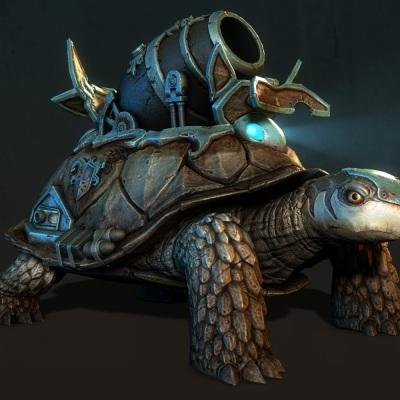 turtletank_viewpoints_fl