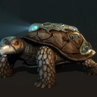 turtletank_viewpoints_fr