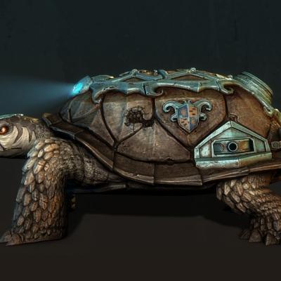 turtletank_viewpoints_r